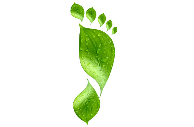 illustration of a leaf twisted into a footprint to represent a carbon footprint