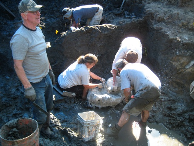 Archaeologists from the University of Iowa work at the site where a wooly mammoth was discovered