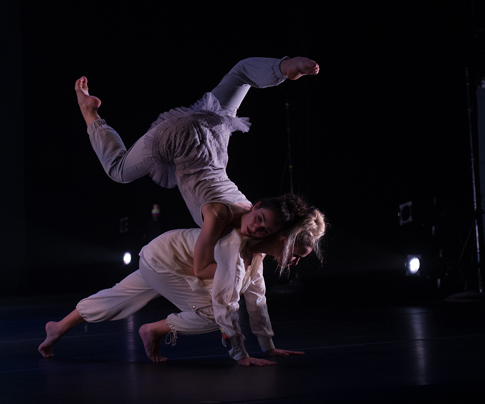 faculty choreographer s showcase Faculty & staff board performances the young choreographer's showcase 2018 the young choreographers showcase is a fun-filled event featuring original.