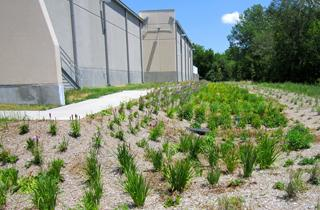 A bio-retention cell will retain and absorb water runoff, serving as a natural filter and providing erosion control.