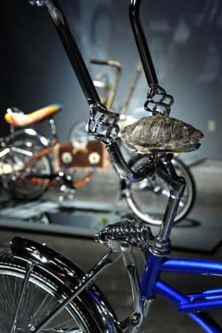Closeup of bicycle handlebars with a turtle shell attached