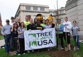 Herky helps Landscape Services staff and UI students plant trees on the Pentacrest