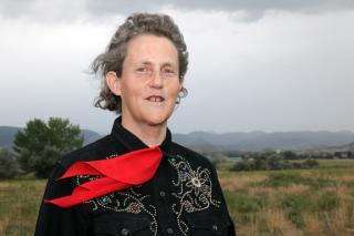 portrait of Temple Grandin