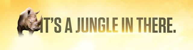 It's a Jungle graphics