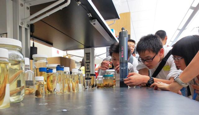 Chinese students examine bug samples from rivers in Iowa during a visit to the State Hygienic Laboratory