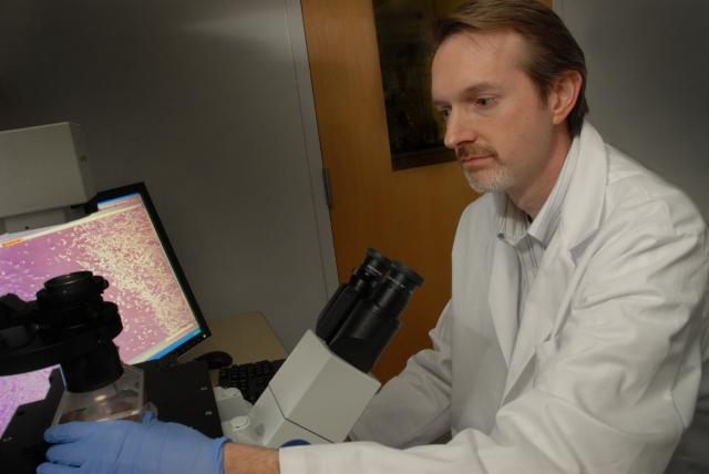 Robert F. Mullins, Ph.D., studies degenerative diseases of the retina in his lab at the UI Carver College of Medicine.