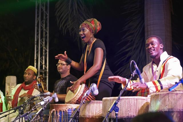 nile project musicians performing