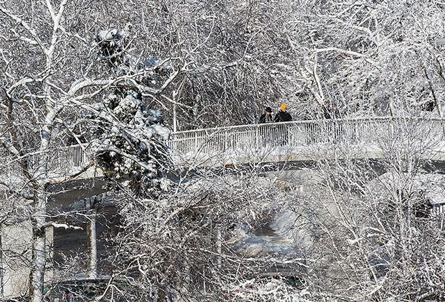 Snow blankets trees as students cross Riverside Drive.