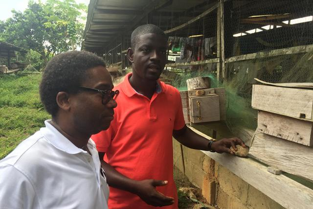 two men on the grounds of a bee business in ghana