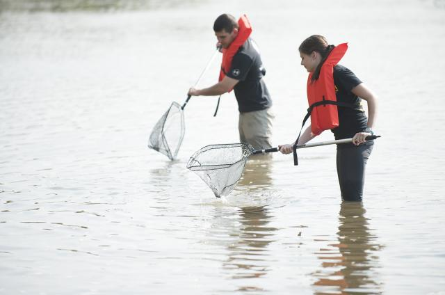 UI students studying water quality