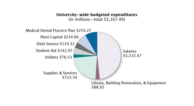 University wide budgeted expenditures