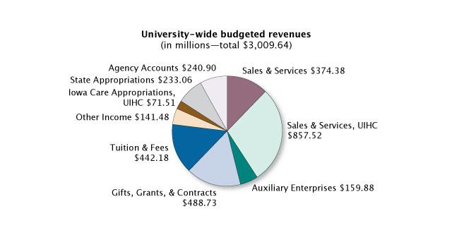 university-wide budgeted revenues