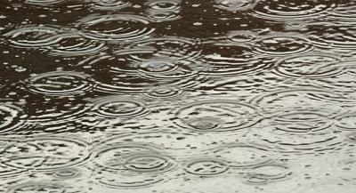 rain drops hitting a puddle of water