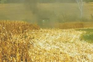 Photo of a farm field during harvest