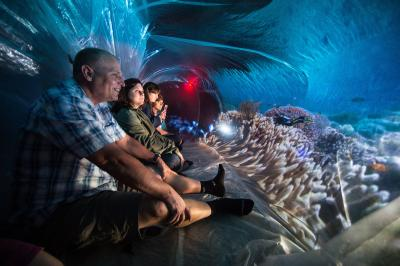 people sitting in art exhibit