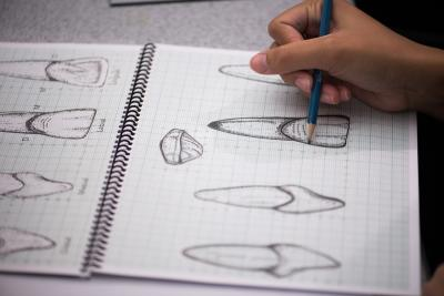 student sketching teeth