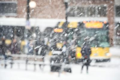 cambus seen through snow in snowy scene