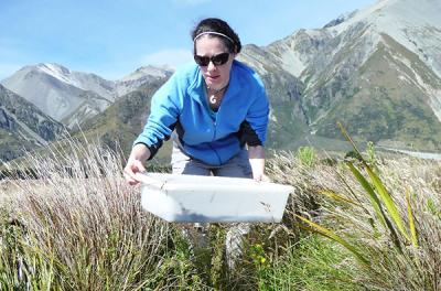 woman carrying bin in mountainous area