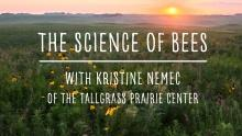 The Science of Bees! with Kristine Nemec