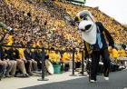 Mascot at a football game.