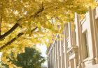 maclean hall in fall