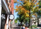downtown fall color