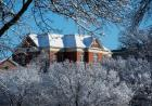Campus covered in snow.