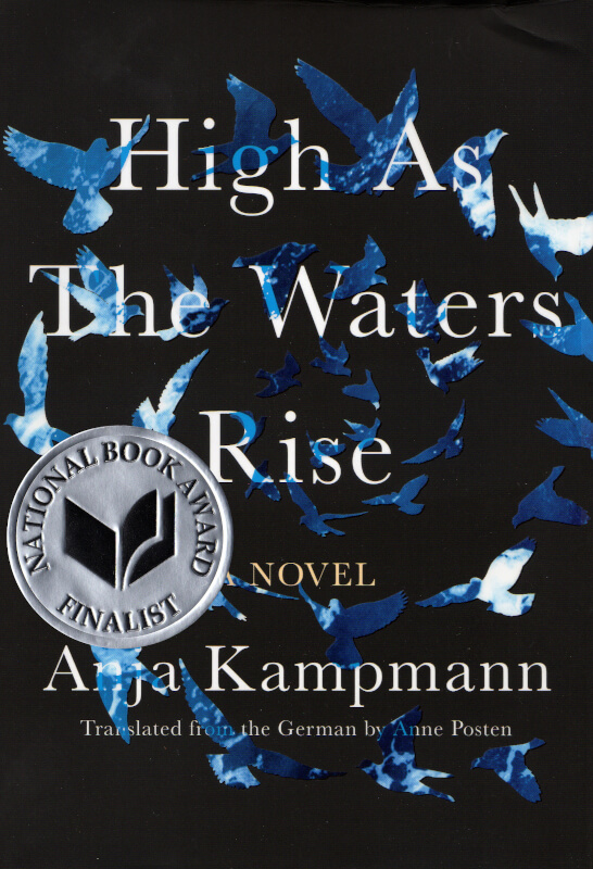 cover of high as the waters rise