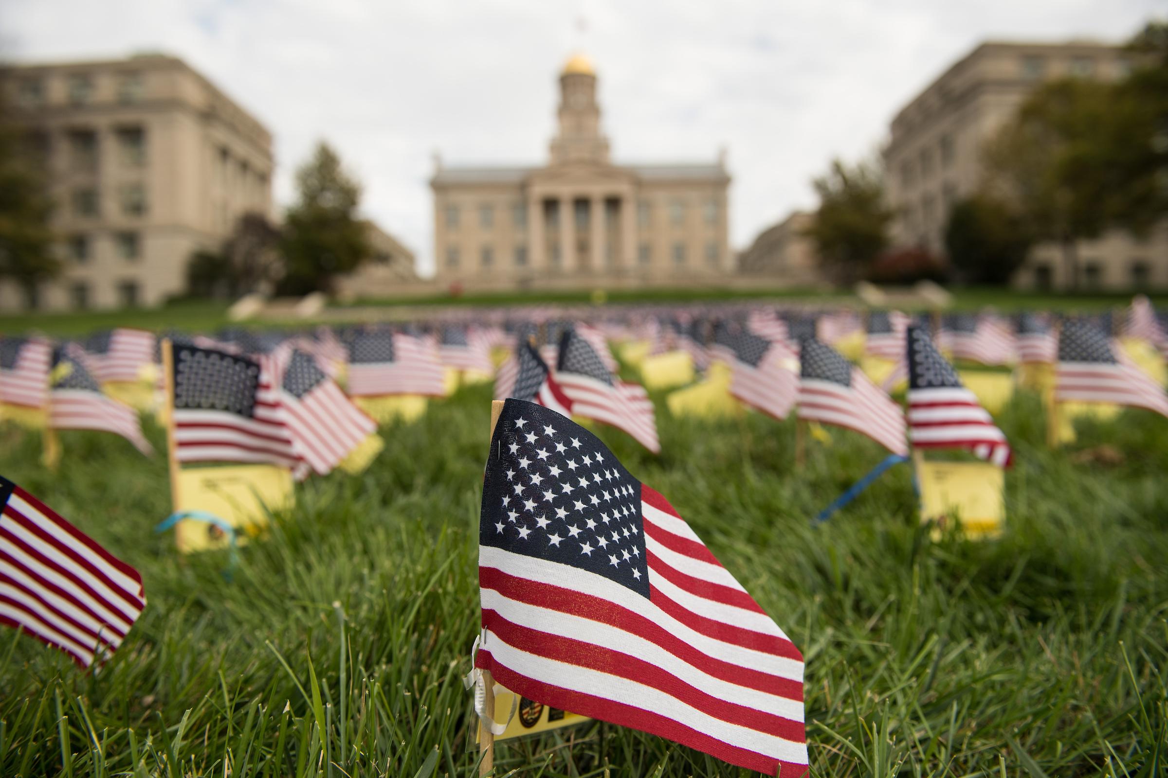 veterans day flags on pentacrest