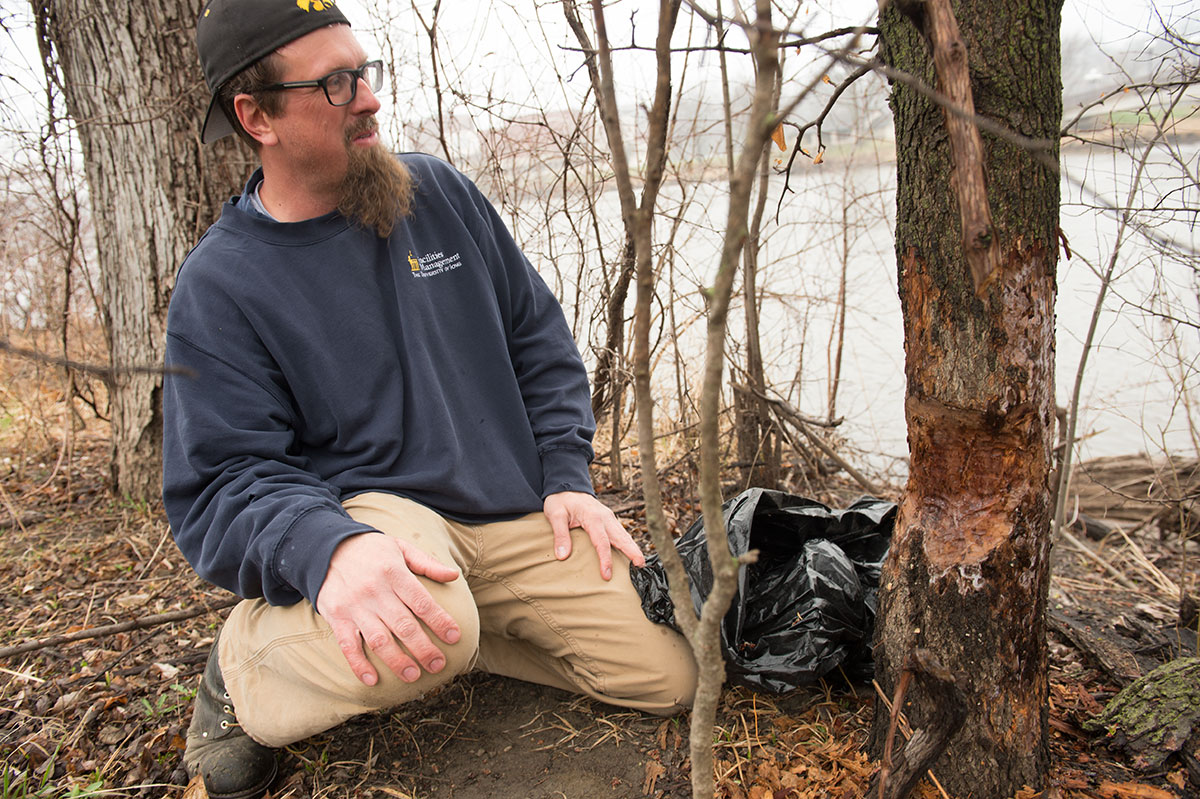 Andy Dahl next to trees showing evidence of beaver gnaw