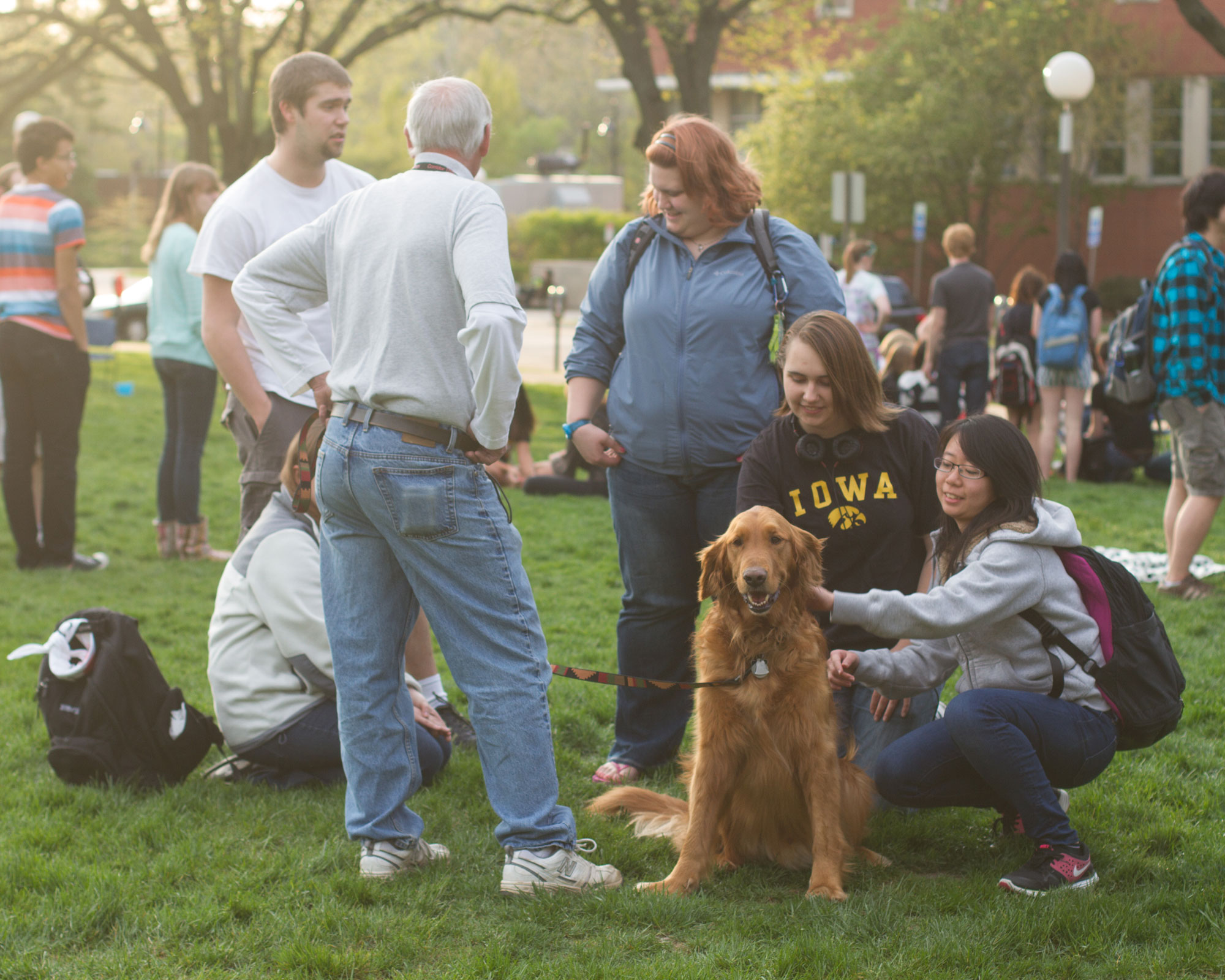 Therapy dogs for students during finals week